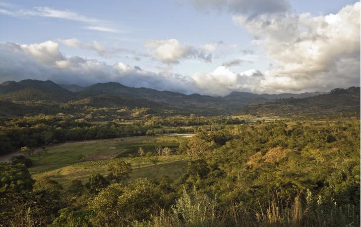 Фото №1 - В джунглях Гондураса найден город неизвестной древней цивилизации