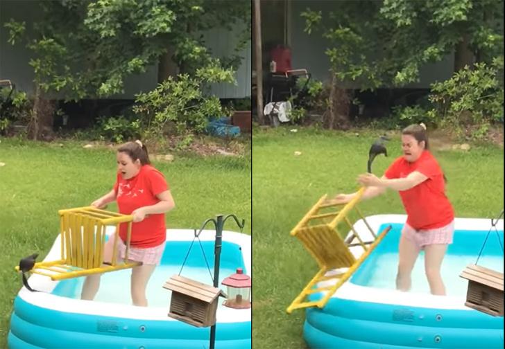 Фото №1 - Девушка хотела помочь белке выбраться из бассейна, но операция по спасению закончилась фиаско (видео)