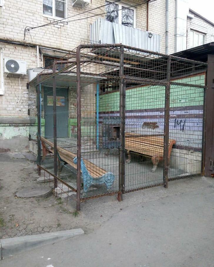 Фото №2 - На Ставрополье нашли «подъезд строгого режима» (фото)