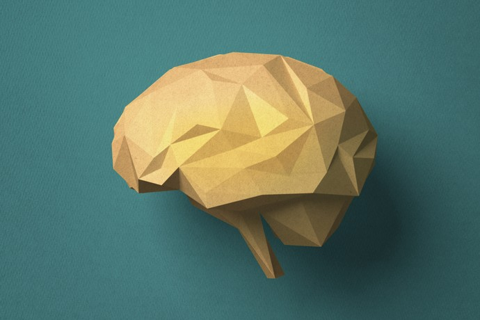 """""""What are you just thinking?"""": What happens if the brain loses one hemisphere"""
