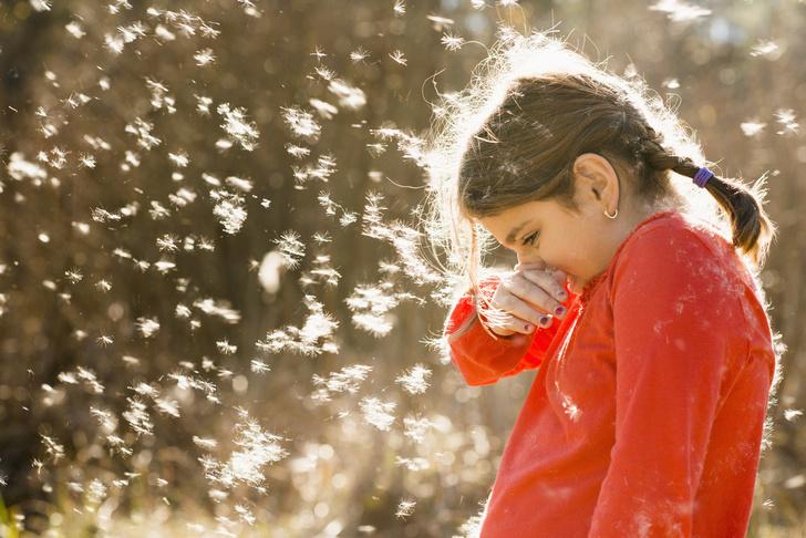 Фото №1 - Как отличить аллергию у ребенка от обычного насморка
