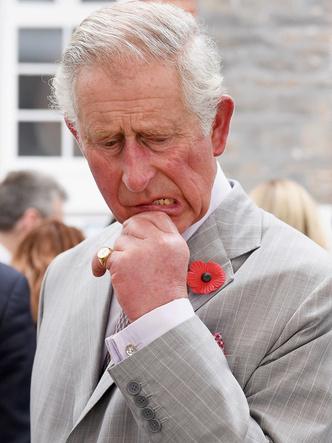 Фото №3 - Нападение на принца: забавное фото с Камиллой, «угрожающей» Чарльзу, стало вирусным
