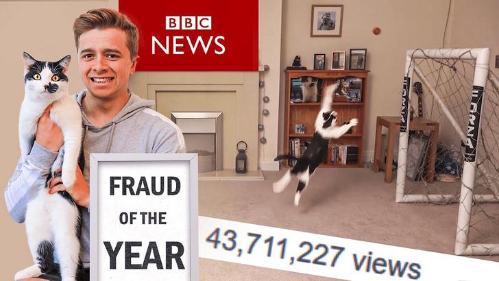 Фото №1 - Видео с котом-вратарём оказалось фейком (видео-разоблачение)