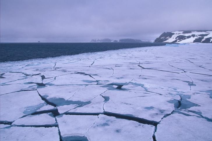 Фото №1 - Самый северный край: 15 фактов о Земле Франца-Иосифа