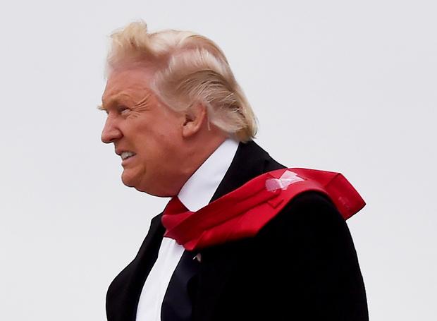 Фото №5 - Что было не так с волосами Трампа