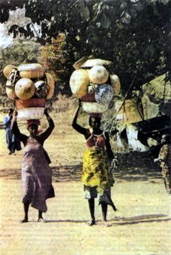 На плечи бенинской женщины ложится немало забот. Во-первых, как и повсюду на планете, семья. Во-вторых, дом с его непростым хозяйством. В-третьих, работа в поле или на огороде. Ну и, конечно же, плоды труда своего надо еще выгодно продать. Коммерческие хлопоты также удел женщин. Ранним утром на сельских дорогах Бенина всегда можно увидеть нагруженных товаром представительниц слабого пола, спешащих на базар.