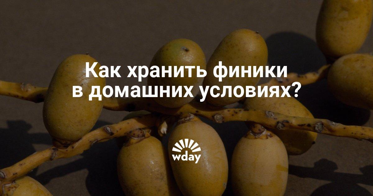 Как хранить финики? Как правильно хранить сушеные плоды в домашних условиях, срок хранения дома в холодильнике