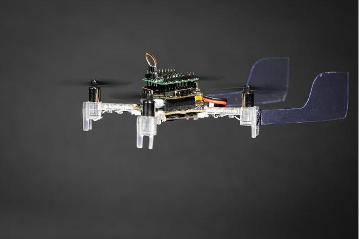 Фото №1 - В США спроектировали робота, который может чувствовать запахи