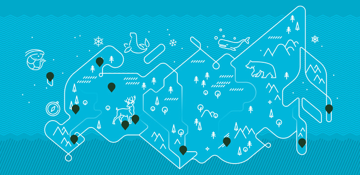 Фото №1 - «Одноклассники» запустили интерактивную карту и 3D-обложки с заповедниками России