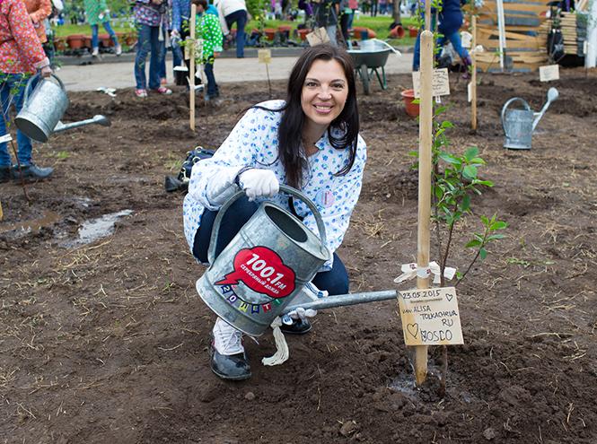 Фото №5 - На ВДНХ посадили вишневые деревья в рамках фестиваля «Черешневый лес»