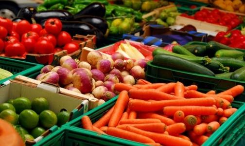 Фото №1 - Европейские овощи вернулись на российский рынок