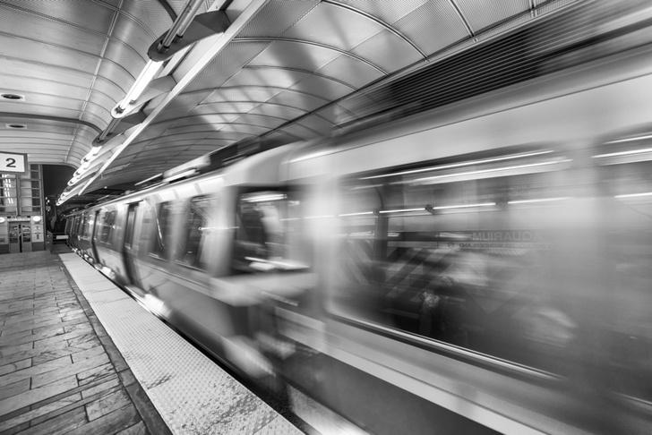 Фото №1 - Биологи рассказали, какие бактерии живут в метро