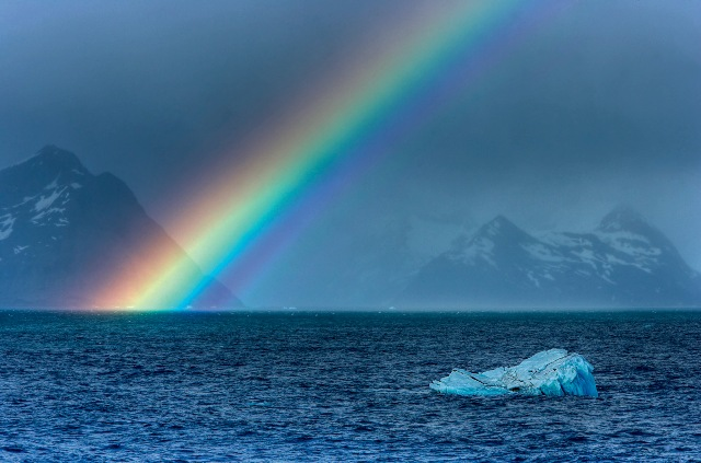 Фото №1 - Место дня. Южная Георгия (Антарктида)
