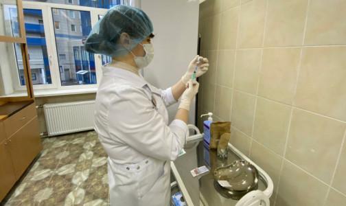 Фото №1 - В Петербурге к февралю откроют 50 новых пунктов вакцинации. За прошедшую неделю число госпитализаций снизилось