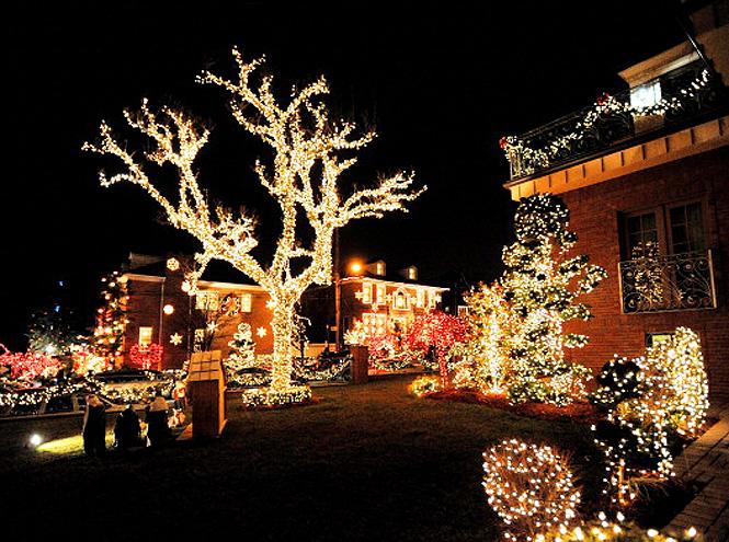 Фото №4 - Куда поехать на Рождество