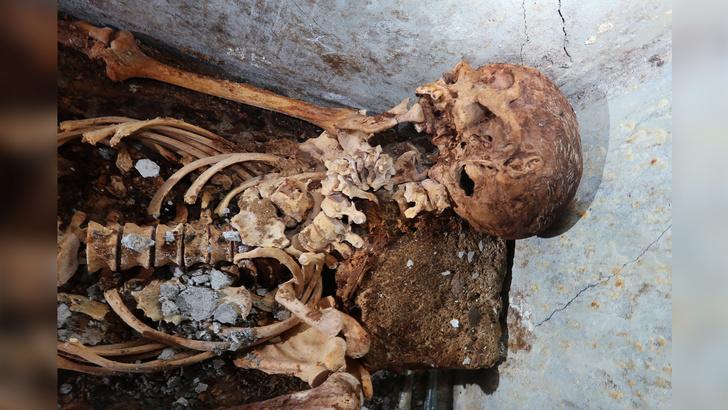 Фото №1 - В Помпеях нашли мумию жреца