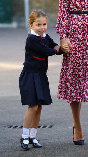 Фото №4 - «Взрослая» прическа и стильное платье: в сети обсуждают новое фото принцессы Шарлотты