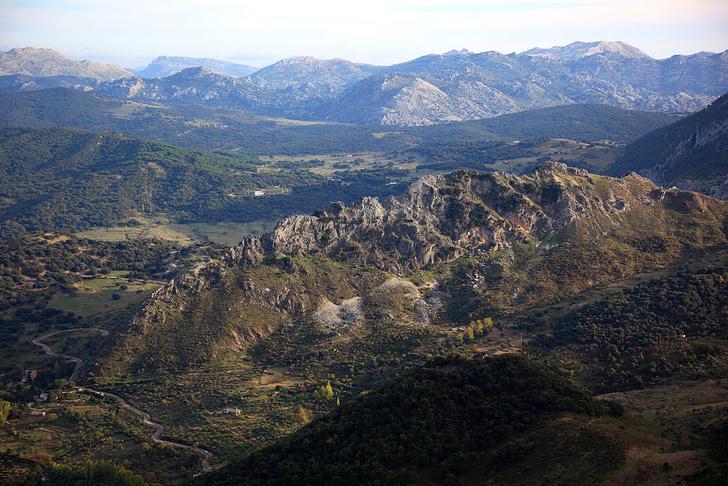 Фото №8 - Пламенное сердце Испании: гид по Андалусии. Часть 2