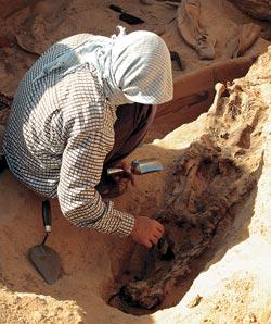 Фото №3 - Золото фаюмских мумий