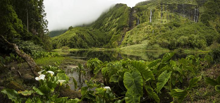 Фото №4 - Неизвестная Португалия: Азорские острова