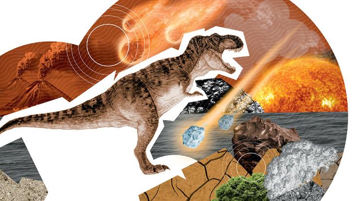 Фото №3 - Шестое великое вымирание