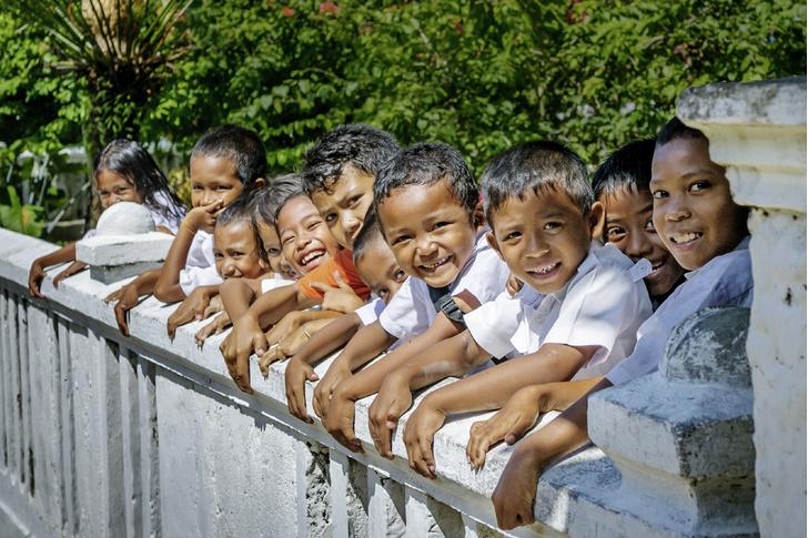 Фото №9 - Орех преткновения: как устроена жизнь на «островах специй»