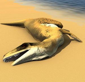 Фото №1 - В Антарктиде нашли новый род динозавров