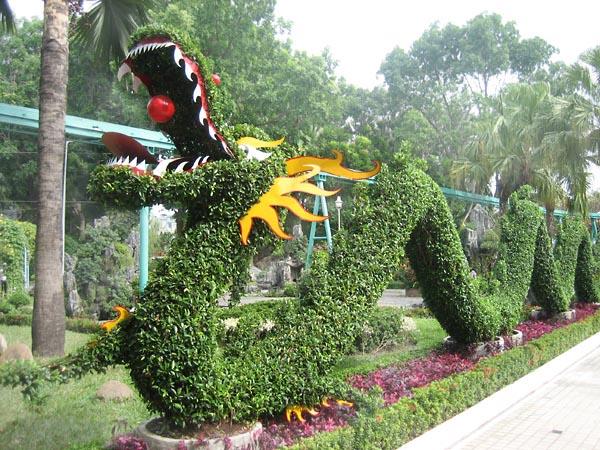 Фото №1 - Зеленый дракон совсем не страшен