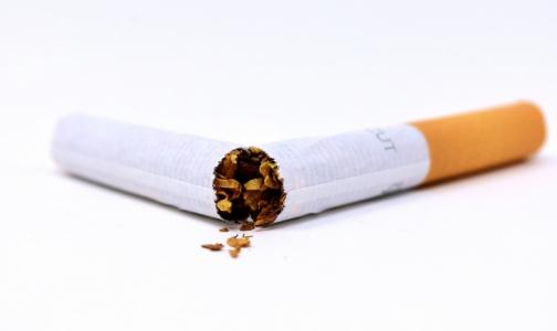 Фото №1 - С начала пандемии более 500 петербуржцев захотели бросить курить