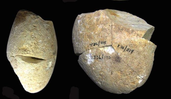 Фото №1 - В Израиле нашли самый древний камень для шлифовки