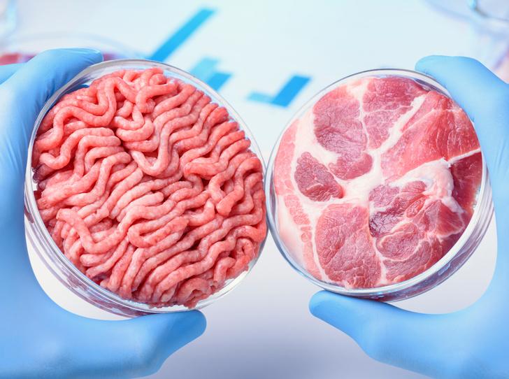 Фото №5 - Искусственное мясо: и люди сыты, и овцы целы