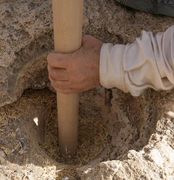 Фото №2 - Археологи попробовали на вкус хлеб из каменного века