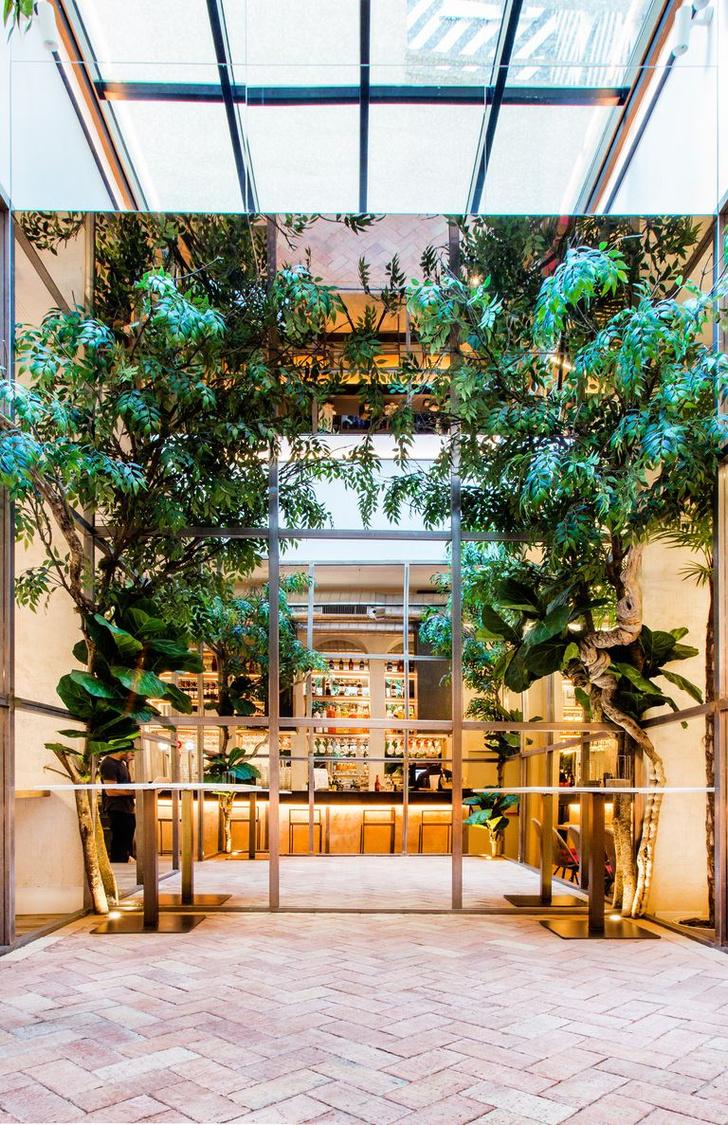 Фото №10 - Ресторан Alboroto в Мадриде