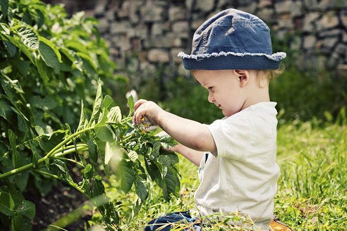 Фото №4 - Я познаю мир: география и природоведение для малышей