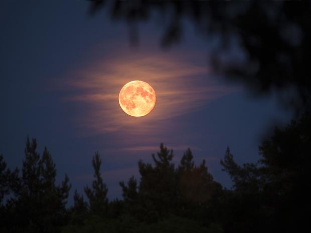 Фото №2 - Как Луна влияет на ваш сон (и что поможет выспаться в любую ее фазу)