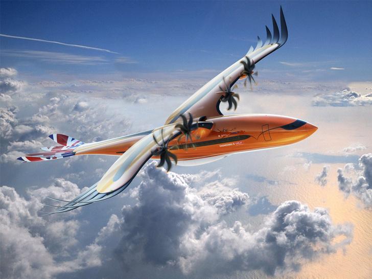 Фото №1 - Авиаконцерн представил «пернатый» самолет