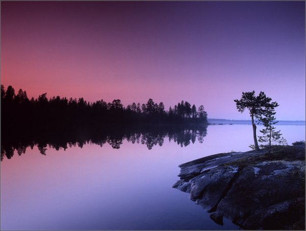 Фото №8 - Игра с природой в простые цвета