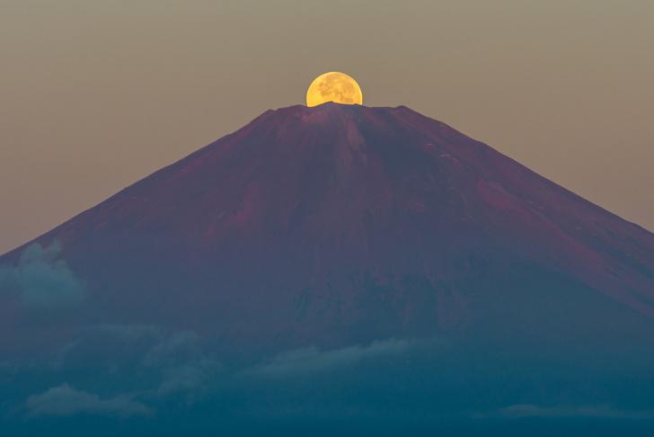 Фото №1 - Событие месяца: Япония