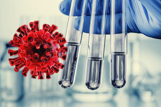 Фото №1 - Ученые: есть три типа коронавируса