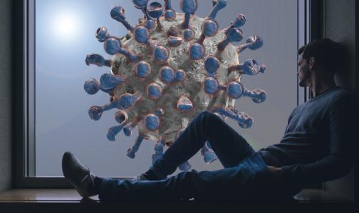 Фото №1 - Минздрав: Спустя пять недель после выздоровления количество антител к коронавирусу снижается вдвое