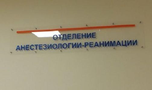 Фото №1 - Бари Алибасова в реанимации связывали. Петербургские врачи объяснили, зачем пациентов фиксируют