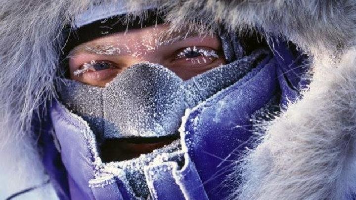 Фото №8 - Пешком по Антарктиде