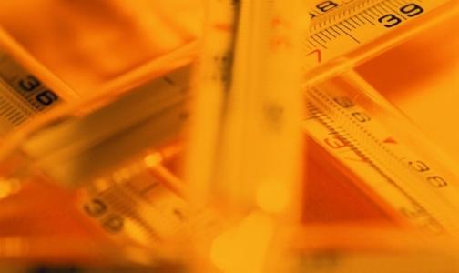 Фото №1 - Эпидемию гриппа можно ожидать через две недели