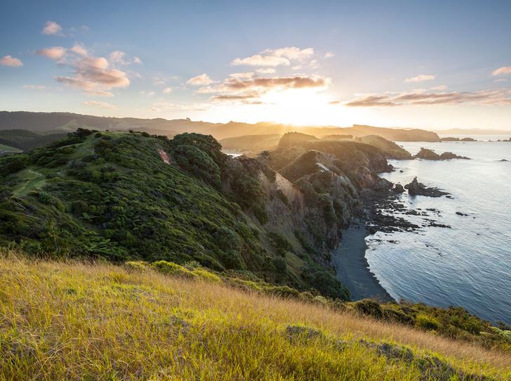 Фото №1 - «Страна длинного белого облака»: самые красивые места Новой Зеландии