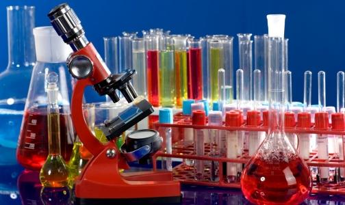 Фото №1 - В Политехе новые биотехнологии будут создавать иностранцы, «думающие по-русски»