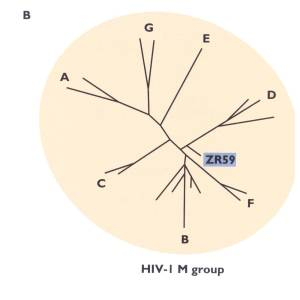 Фото №1 - СПИД в XIX  веке