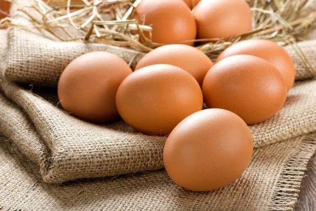 Применение яичного белка