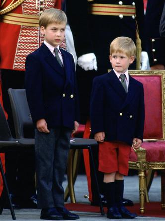 Фото №6 - Самое странное королевское правило, которому был обязан следовать Джордж (но не Луи)