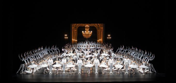 Фото №1 - Посмотреть балет, не выходя из дома: Парижская опера покажет онлайн концерт
