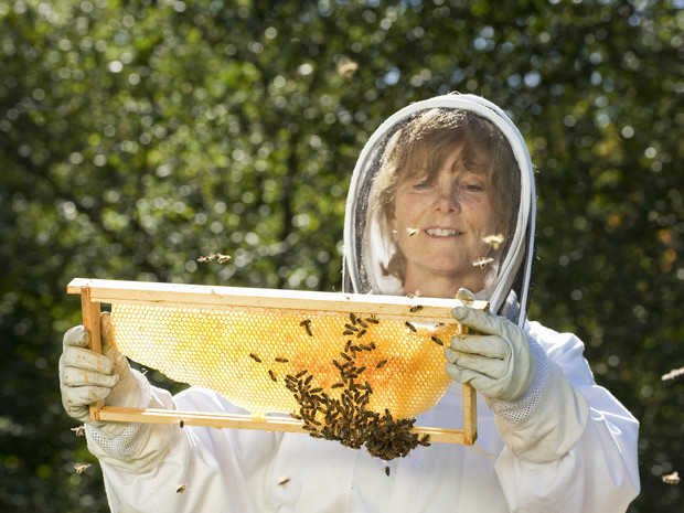 Фото №2 - «От женщин пчелам»: Guerlain запускает программу, которая расширит права женщин